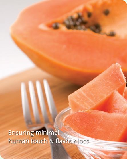 Food Processing Company Iqf Fruits Vegetables